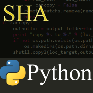 Using Python to Make File Copying More Useful - Mikes Research and