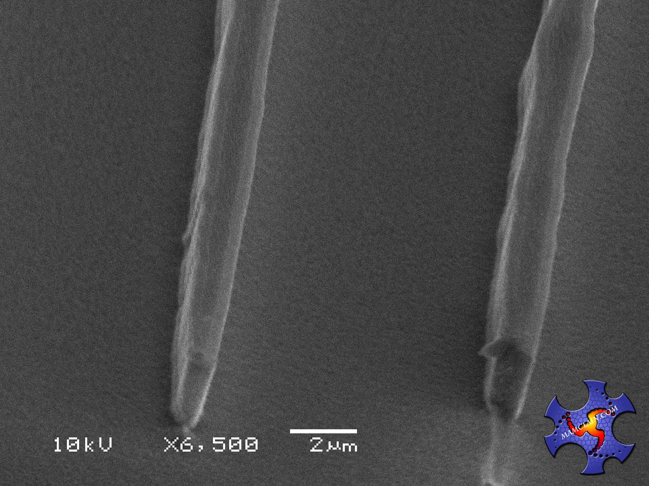 Note: The Oxide on the Sidewall is Lighter Since Oxide Reflects the SEM Beam Better.